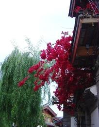 丽江古建筑