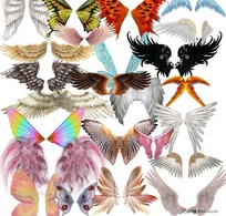 PSD分层翅膀素材