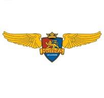 英雄的勋章(logo设计图)