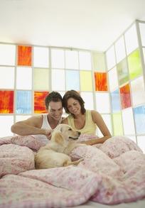 坐在床上被子里和狗狗玩耍的情侣