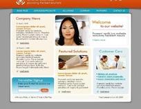 欧美商务简洁网页设计(87)