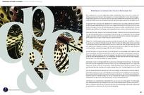 英文字母画册内页设计