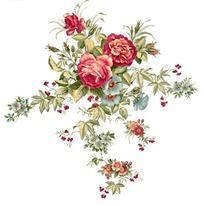 牡丹花作品设计