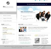 商务软件网站网页模板