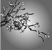 矢量花纹 花边图片