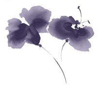 水墨风格蝴蝶兰花朵