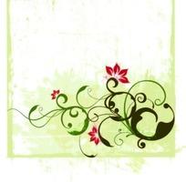 浅绿色背景上的卷草图案花