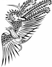 展翅飞翔的雄鹰图片_图片