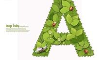 树叶字母A字形