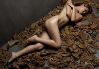 裸体躺在枯树叶上的性感女模特写真照片