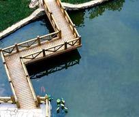 水上小木桥图片图片