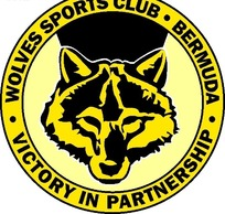 圆形黄色狼头图案标志设计