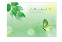 韩风唯美蝴蝶与绿叶背景