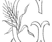 字母麦穗组合EPS矢量设计