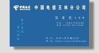 蓝色调中国电信玉林分公司横版名片设计