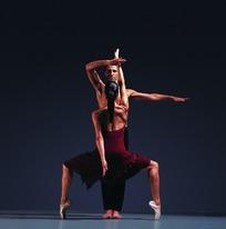 女分腿脚尖蹲立上下伸臂男立展右臂曲抬左臂