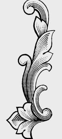 简笔画 设计 矢量 矢量图 手绘 素材 线稿 204_459