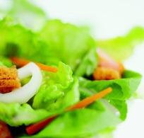一盘蔬菜沙拉特写照片