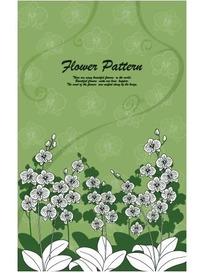 绿色背景上的蝴蝶兰图案花