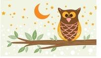 星星月亮背景上的猫头鹰图片