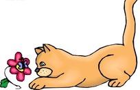 手绘趴在地上看着花的猫咪