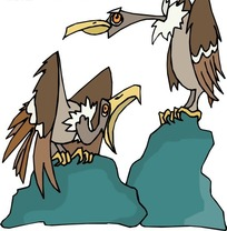 手绘站在石头上的两只秃鹫