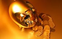 单孔金猪存钱罐与硬币