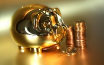 金猪存钱罐与货币