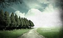 蓝天白云下绿色草地上的一条小路和一排小树psd