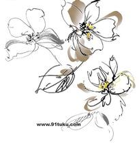 手绘线稿插画花卉设计文件