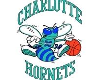 Charlotte Hornets标志设计