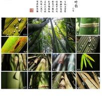 一组关于竹的拼图