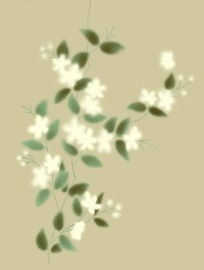 朦胧的手绘白色小花朵插画文件