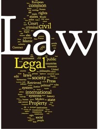 欧美创意纯文字排版法律主题网页设计模板