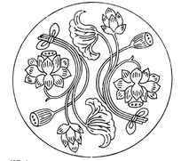 2朵莲花的生长过程矢量素材