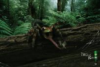 国外蜘蛛吃虫主题杀虫剂创意广告图片