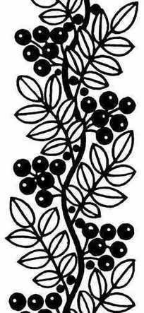 黑白带果实植物花卉图片