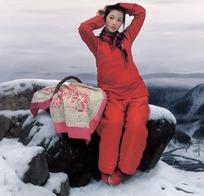 做在落雪石块上的红衣女子画像