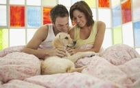 在床上逗着狗玩的情侣