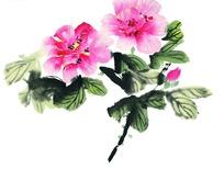 装着美丽花朵的花瓶写意画图片图片