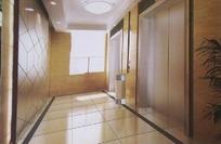 豪华电梯走道设计效果图