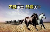 一群奔跑中的骏马