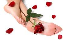 玫瑰花和脚