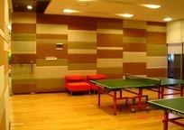 体育室内两张绿色乒乓球桌和两张红色椅子