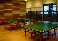 体育室内两张绿色乒乓球桌子