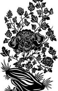 中国古典图案-带脉络的牡丹和羽状复出叶子