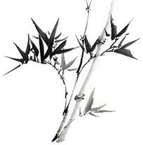 画法的竹子