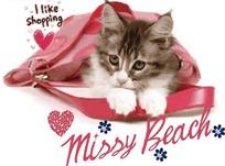 趴在包包下的猫咪卡通矢量图案