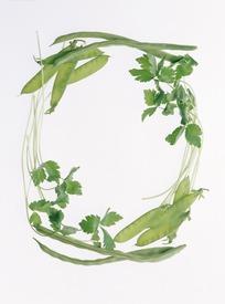 带有绿色蔬菜叶子组成环形照片