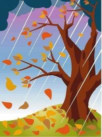 下雨中的树杆和落叶